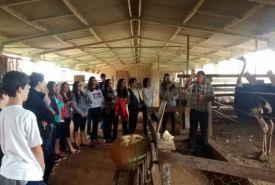 Aulas de Campo