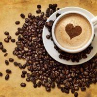 Café, o poema do café