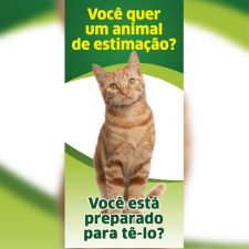 Guarda Responsável - Gato (folder)