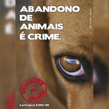 Guarda responsável - Cão (panfleto)