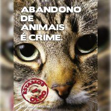 Guarda responsável - Gato (panfleto)