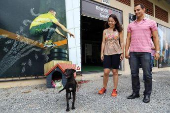 Parceria entre Prefeitura e comunidade incentiva adoção comunitária de cães