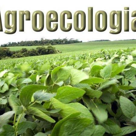 GOVERNO DO PARANÁ QUER AMPLIAR PRÁTICA DA AGROECOLOGIA NA GRANDE CURITIBA