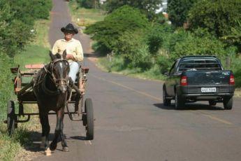 Câmara de Curitiba aprova proibição do uso carroças e charretes