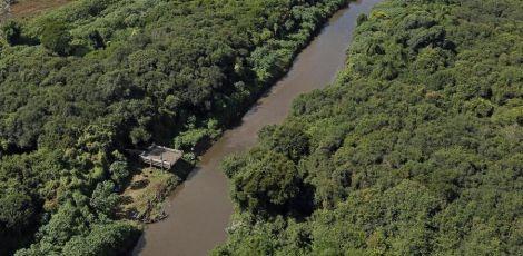 Nos últimos 3 anos, Curitiba ganhou mais áreas verdes do que em duas décadas