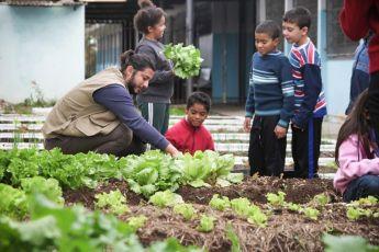 Crianças da Cohab plantam hortas e têm aulas de educação ambiental em Curitiba