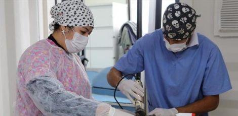 Castramóvel realiza cirurgias na Praça Rui Barbosa até quinta-feira