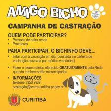 Curitiba oferece castração gratuita de cães