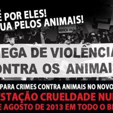 Movimento nacional contra a crueldade promove ato em Curitiba dia 18