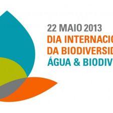 Dia Internacional da Biodiversidade: 22 de maio