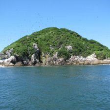 Senado aprova criação do Parque Nacional Marinho das Ilhas dos Currais no Paraná