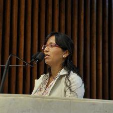 Rasca pede apoio às reivindicações dos povos indígenas do Paraná