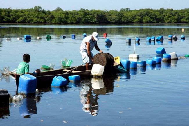 Rasca comemora resultados da criação de peixes no Paraná