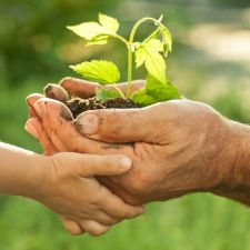 Artigo do deputado Rasca - A importância da Educação Ambiental no Plano Estadual de Educação