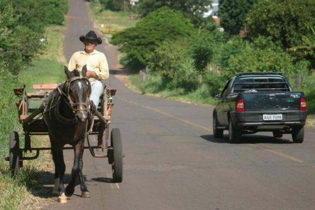 Rasca comemora aprovação do fim da tração animal em Curitiba