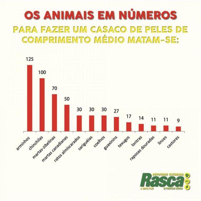 Assembleia aprova PL que proíbe criação de animais para extração de peles
