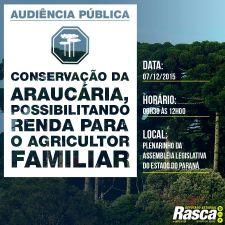 Audiência pública discutirá conservação da araucária com geração de renda