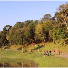 Deputado pede regularização da pista de corrida do Parque São Lourenço