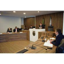 CPI dos Animais ouve coordenador da Rede de Proteção de Animais de Curitiba
