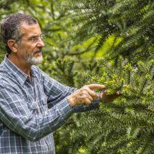 Semana do Meio Ambiente: Assembleia concede título de Cidadão Honorário do Paraná ao professor Flávio Zanette, nesta sexta