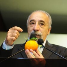 Nas vésperas da 23ª Exponkan, Lei que permite transporte interestadual da fruta é destacada na ALEP