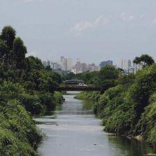 Despoluição do Rio Belém é tema de audiência pública na Câmara Municipal