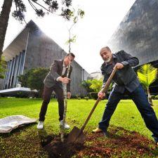 Jardim da Assembleia Legislativa recebe muda de Pau-Brasil