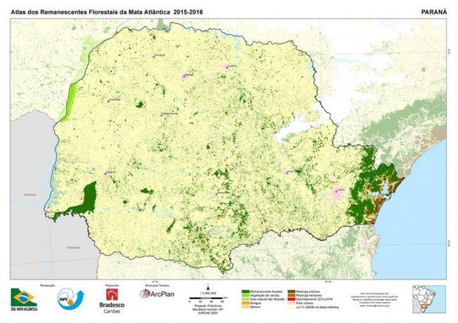 Desmatamento da Mata Atlântica cresce 74% em um ano no Paraná