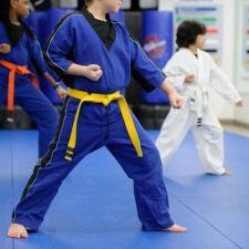 PL 382/2014 - Defesa Pessoal na grade curricular de ensino do PR