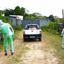 PL 353/2014 - Proibição da capina química no perímetro urbano