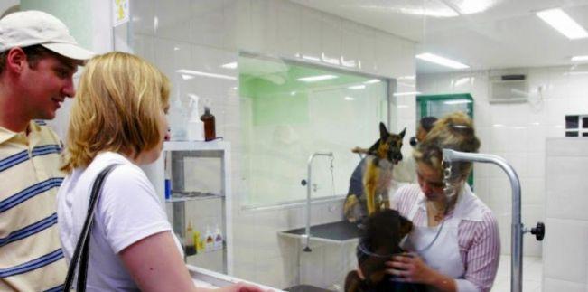 Lei 17.949/2014 - Transparência nos serviços de banho e tosa nos pet shops do PR